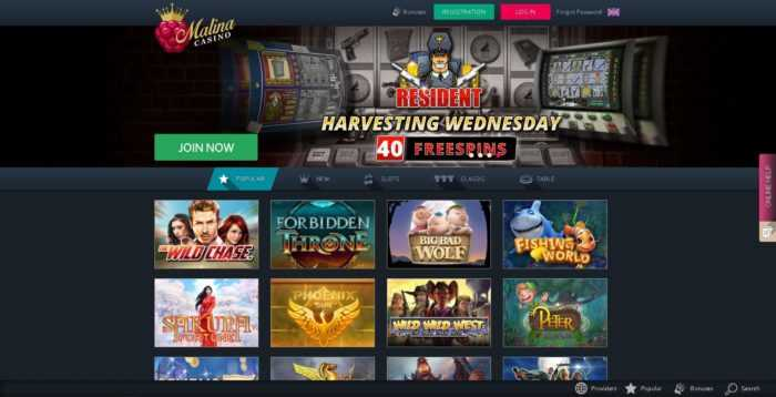 Malina Casino Homepage