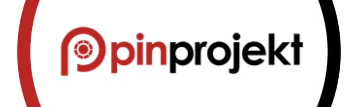 Pin Projekt Logo